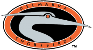 Delmarva-Shorebirds-Logo
